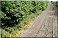 J2463 : The Antrim line, Knockmore, Lisburn (July 2014) by Albert Bridge