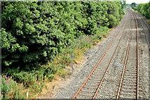 J2463 : The Antrim line, Knockmore, Lisburn (July 2014) by Albert Bridge