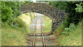 J1966 : Disused railway, Brookhill near Lisburn - July 2014(2) by Albert Bridge