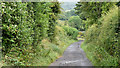 J3179 : Cave Hill path, Belfast - August 2014(1) by Albert Bridge