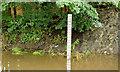 J3673 : The Knock River, Belfast - August 2014(3) by Albert Bridge