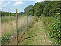 SU9546 : Deer fencing by Alan Hunt