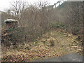 SS9088 : Overgrown disused railway bridge in the Garw Valley by eswales