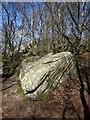 SE2064 : Boulder, Brimham Rocks by Derek Harper