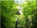 SN7477 : Devil's Bridge arches through the trees by Rob Farrow