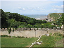 SS8872 : From Dunraven Tower by Debbie J