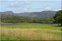 SH6029 : Fields near Tyddyn Rhyddid by Nigel Brown