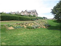 NT9953 : Planting in Coronation Park by Graham Robson