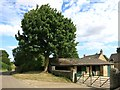 SP4322 : Tree and Stables at Ludwell Farm by Des Blenkinsopp