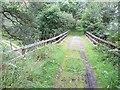 NJ2042 : Bridge over the Cardnach Burn by Richard Webb