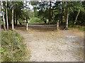 SU9361 : Gated entrance, Brentmoor Heath by Alan Hunt