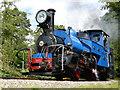 SP4725 : Darjeeling Himalayan Railway - aka Beeches Light Railway by Chris Allen