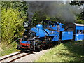 SP4725 : Beeches Light Railway - attacking the bank by Chris Allen