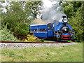 SP4725 : Darjeeling Himalayan Railway in deepest Oxfordshire by Chris Allen