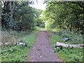 SJ4063 : Chester Approach near Handbridge by Jeff Buck