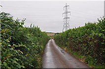 SS5726 : North Devon : Country Lane by Lewis Clarke