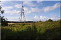 SD4260 : Pylon and rough ground, Heysham Moss by Ian Taylor