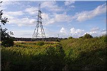 SD4260 : Pylon and rough ground, Heysham Moss by Ian Taylor
