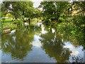 TF0206 : River Welland Downstream from George Bridge by David Dixon