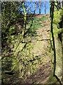 SE2662 : Quarry, Kettle Spring Wood by Derek Harper