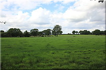 SJ7971 : View from the gardens at Jodrell Bank by Jeff Buck