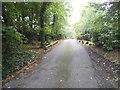 TQ2394 : Horseshoe Lane, Totteridge by David Howard