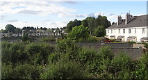 N3423 : Rear of houses at Cahir Mhór by Ian Paterson