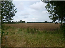 TL3160 : View to the north of Cambourne by Marathon