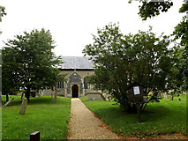 TM3193 : St.Peter's Church, Hedenham by Adrian Cable