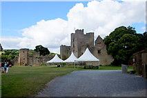 SO5074 : Ludlow Castle by Mike Pennington