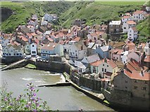 NZ7818 : Views of Staithes #3 by Mike Kirby
