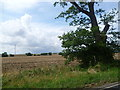 TL2365 : View from the road to Offord D'Arcy by Marathon