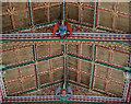 ST5445 : Painted ceiling, St Cuthbert's church, Wells by Julian P Guffogg