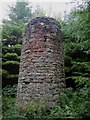 NU0536 : Ruined tower in Shiellow Wood by Graham Robson