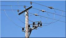 J4772 : Pole and power lines, Killynether, Newtownards by Albert Bridge