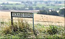 J4772 : Scrabo Road name sign, Newtownards by Albert Bridge