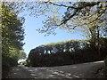 SX3368 : Lane junction, Caddapit by Derek Harper