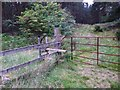 NJ5700 : A gate with stile entry into Westertown Wood by Stanley Howe