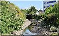 J3674 : The Connswater, Belfast (August 2014) by Albert Bridge