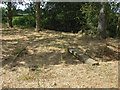 SU8871 : Rudimentary footbridge by Alan Hunt