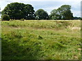 TL1381 : The remains of a manor house moat, Little Gidding by Richard Humphrey