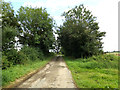 TM3091 : Spink's Lane, Hedenham by Adrian Cable