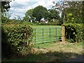 SU8872 : Small field off Church Lane by Alan Hunt