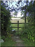 ST1005 : An awkward stile, Hembercombe, Broadhembury by David Smith