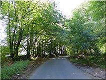 ST1105 : Stafford Hill by David Smith
