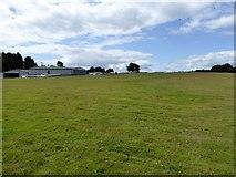 ST1006 : Devon and Somerset Gliding Club, North Hill by David Smith