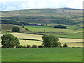 NY6041 : Fields near Five Lane Ends by Oliver Dixon