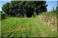 SE7839 : Path towards Seaton Old Hall by Ian S