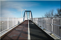 TL4761 : Jane Coston Cycle Bridge by Kim Fyson