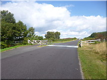 SY8086 : Winfrith Heath, cattle grid by Mike Faherty